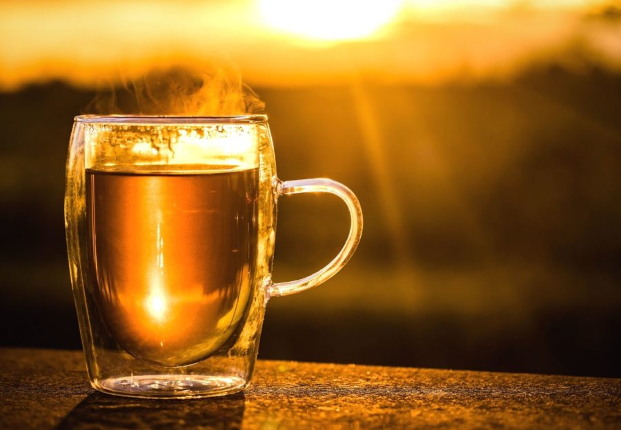 Interesting Facts about Rooibos